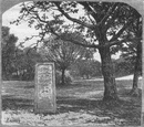 HANTS. New Forest. Rufus Stone 1898 old antique vintage print picture